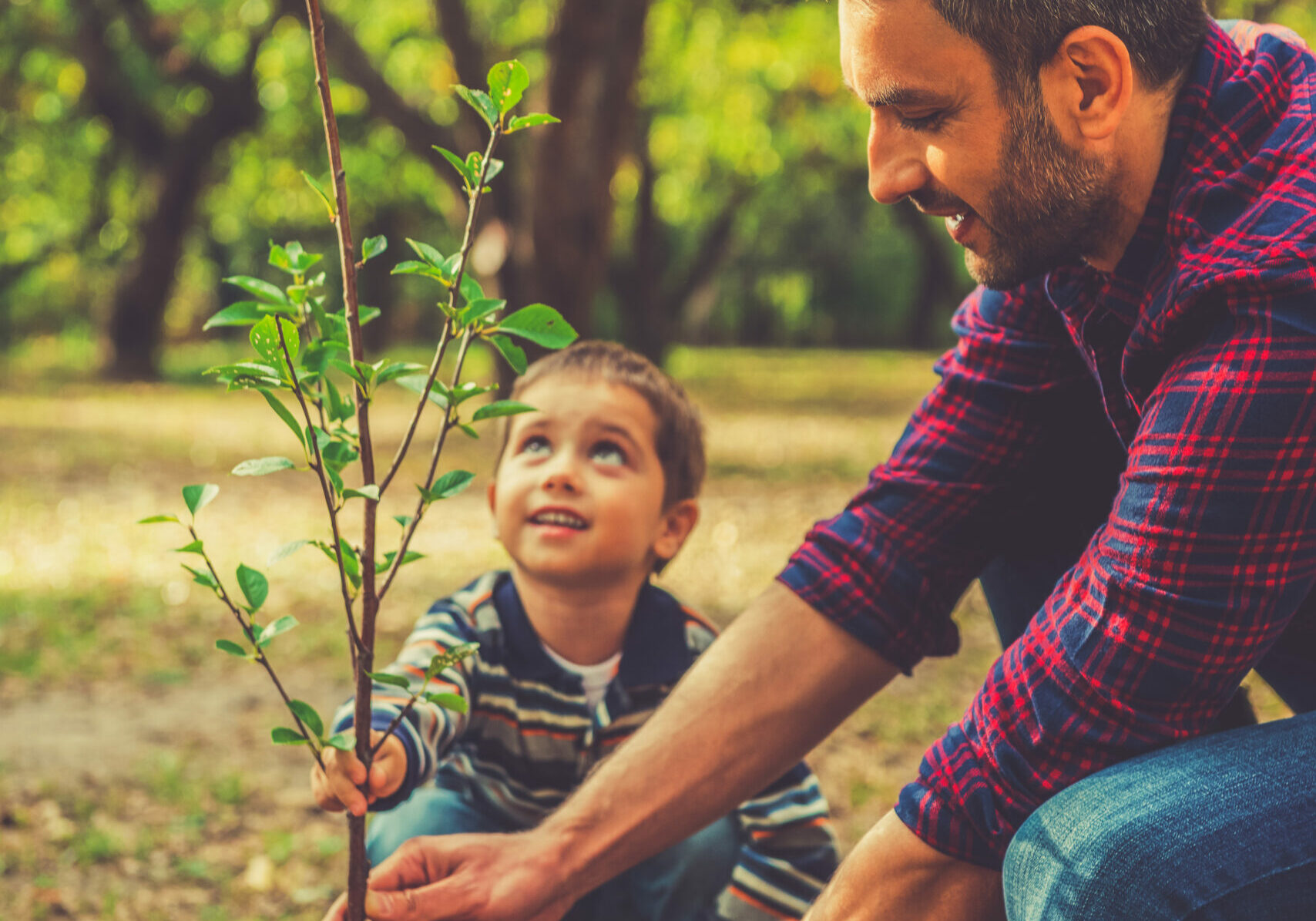 Happy young man planting a tree while his little son helping him